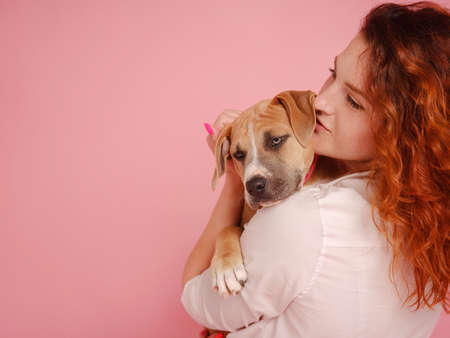 beautiful redhead woman with Cute puppy American Staffordshire Terrier have good relationships, isolated over pink background. Concept of care, education, obedience training, raising pets