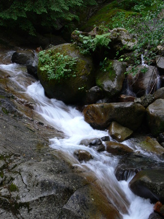 Waterfall along the Annette Lake Trail in Washington Stock Photo - 1477139