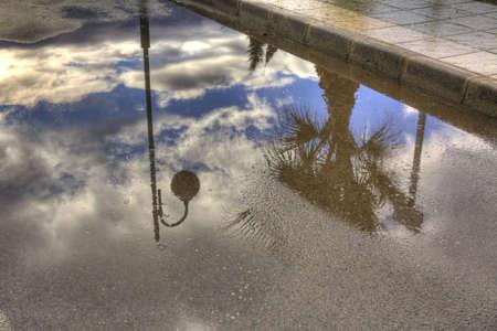 lamp post: palma e post luce riflessa in una pozzanghera dopo la tempesta