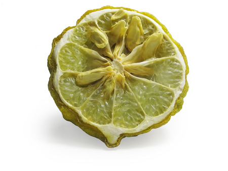 leech: Un mango pieza marchitado de la cal de la sanguijuela Foto de archivo