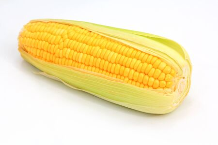 Sweet corn on white background