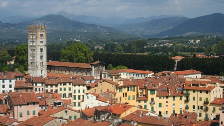 overview: Panorama of the old town of Lucca, Tuscany, Italy