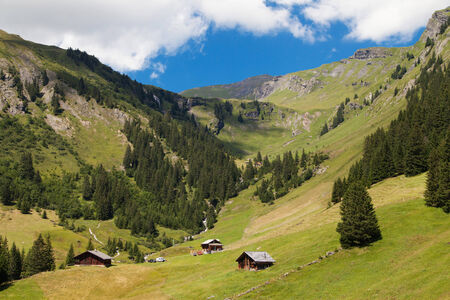 bernese oberland: Alpine valley in Grindelwald, Bernese Oberland, Switzerland  Stock Photo