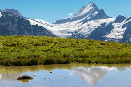 oberland: Mount Schreckhorn reflected on a lake, Bernese Oberland, Switzerland