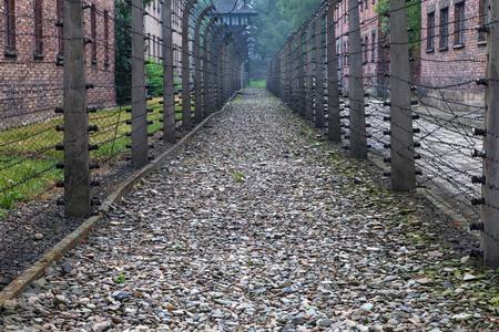 oswiecim: Barbed wire fences at Auschwitz at Auschwitz I, Oswiecim, Poland.