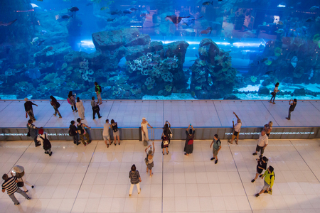 Dubai, United Arab Emirates - September 9, 2018: The Dubai Aquarium in Dubai, United Arab Emirates, showcases more than 300 species of marine animals, including sharks and rays.