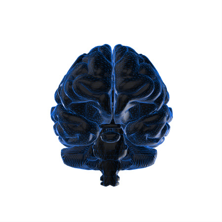 losing brain function: human brain isolated and white background.3d render.