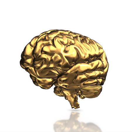 golden human brain isolated and white background.3d render. Stock Photo