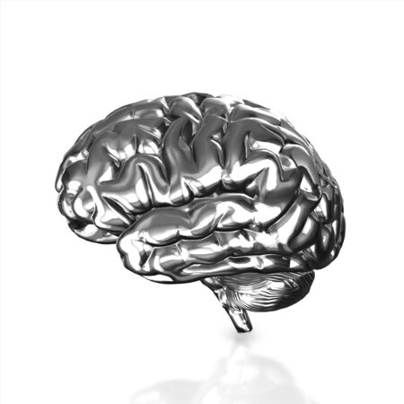 losing knowledge: Silver human brain isolated and white background.3d render.