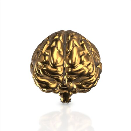 lose: golden human brain isolated and white background.3d render. Stock Photo