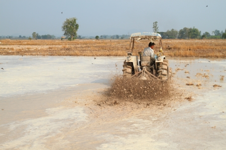 mechanization: Mechanization of Thai farmer for rice cultivation