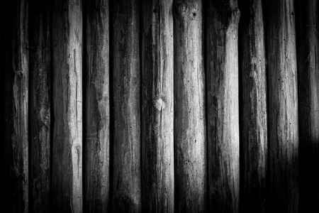 panel ling: abstract Black and white Wood log background