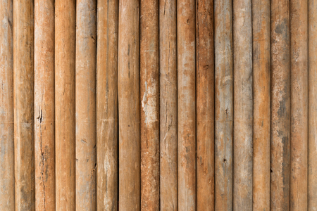 panel ling: Wood log background textured