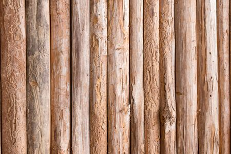 panel ling: Wood log for background textured