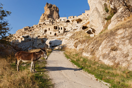 Cappadocia, donkey on the road to old town, Turkey Stock Photo - 115812953