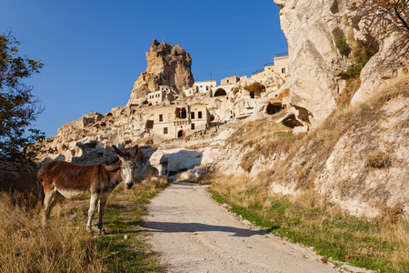 Cappadocia, donkey on the road to old town, Turkey