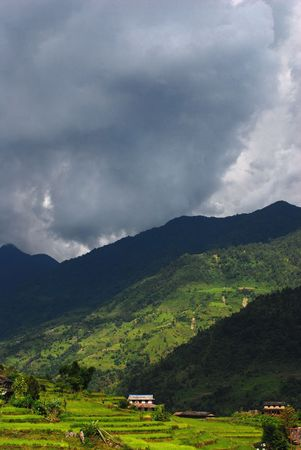 pastoral: Pastoral Landscape of Nepal