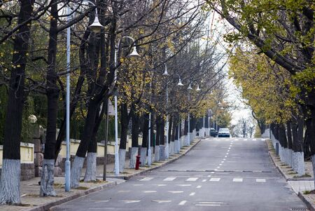late fall: beautiful fall road in the city of late autumn