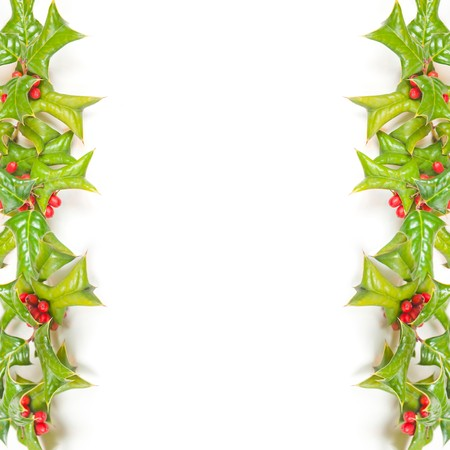Christmas framework with holly berry isolated Stock Photo - 8203818