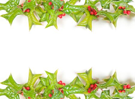 hollyberry: Christmas framework with holly berry isolated