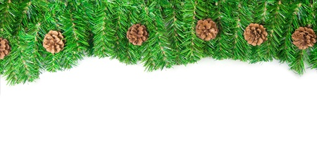 Christmas green framework with Pine needles isolated  Stock Photo - 8348796
