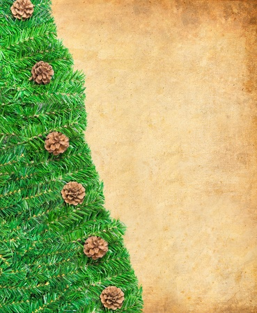 Christmas green framework with Pine needles and cones isolated photo