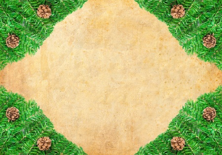 Christmas green framework with Pine needles and cones isolated Stock Photo - 8319089