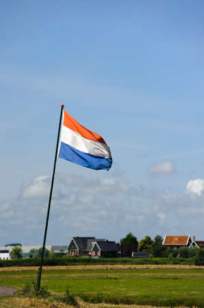 Fresh bright green summer field at amsterdam with netherlands flag  photo