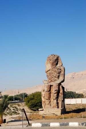 The great Colossi of Memnon (1350 BC), giant statues near the Kings Valley, in Luxor, Egypt Stock Photo - 8885755