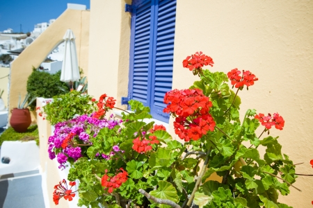 Steps In A Greek Village With Plants And Flowers Stock Photo