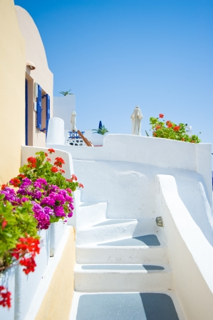 santorini greece: White old staircase and flowers at Santorini island,Greece Stock Photo