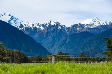 franz josef: Green meadows and rustic  fence, New Zealand Stock Photo