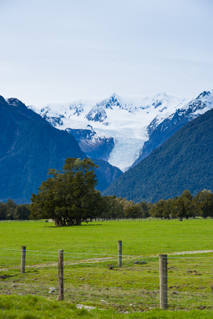 west coast: Green meadows and rustic fence, New Zealand