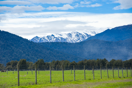 franz josef: Green meadows and rustic fence, New Zealand