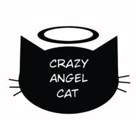 Crazy angel cat