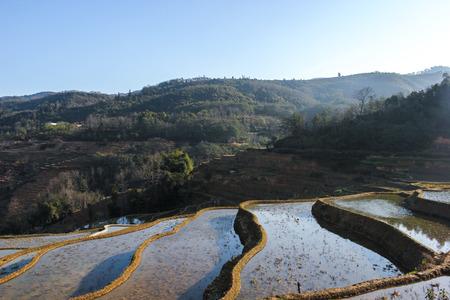 yuan yang: China Yunnan Province Yuanyangtitian scenery Stock Photo