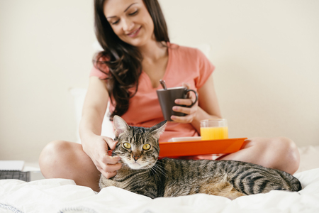 pet cat: Woman to caress her cat and having breakfast. She is in her bedroom