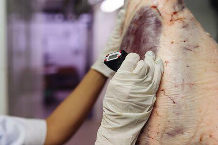 carnicería: control de calidad de la carne en la carnicería. Foto de archivo