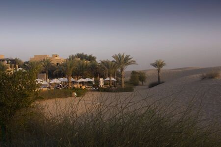 Oasis in the Desert at dusk Stock Photo - 2809558