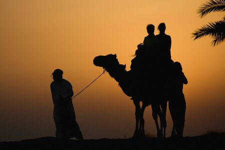 Late afternoon camel rides in the Dubai desert Stock Photo