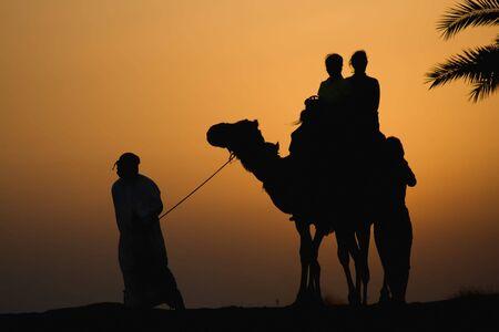 arabic desert: Late afternoon camel rides in the Dubai desert Stock Photo