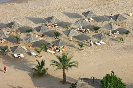 arial view: Arial view of beach with sunbeds and straw parasols