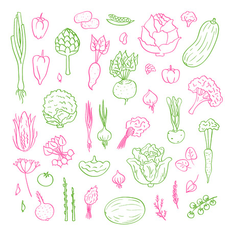 Vector hand drawn doodle vegetables icons set illustration Stok Fotoğraf