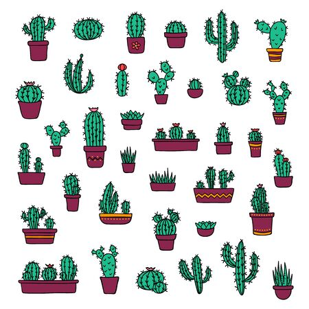 Vector cacti and succulents in colorful pots doodle illustration. Home and wild blooming cactus flower plants set
