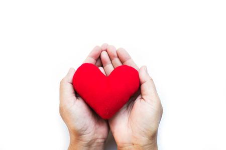Roten Kissen Herz In Zwei Palmen Der Hand, Zum Valentinstag ...
