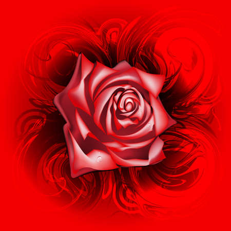 Red rose on an abstract background, eps10 Vector