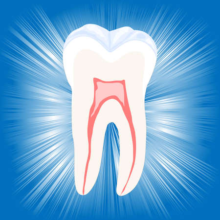 fillings: Tooth, vector illustration, eps10