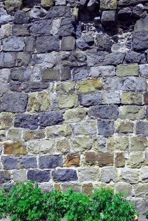 fixed line: Muro de piedra con un color verde hierba