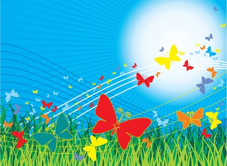The vector image of butterflies on a background of the sun and a grass