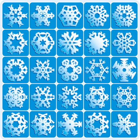 set is 25 super natural vector snowflakes Vector